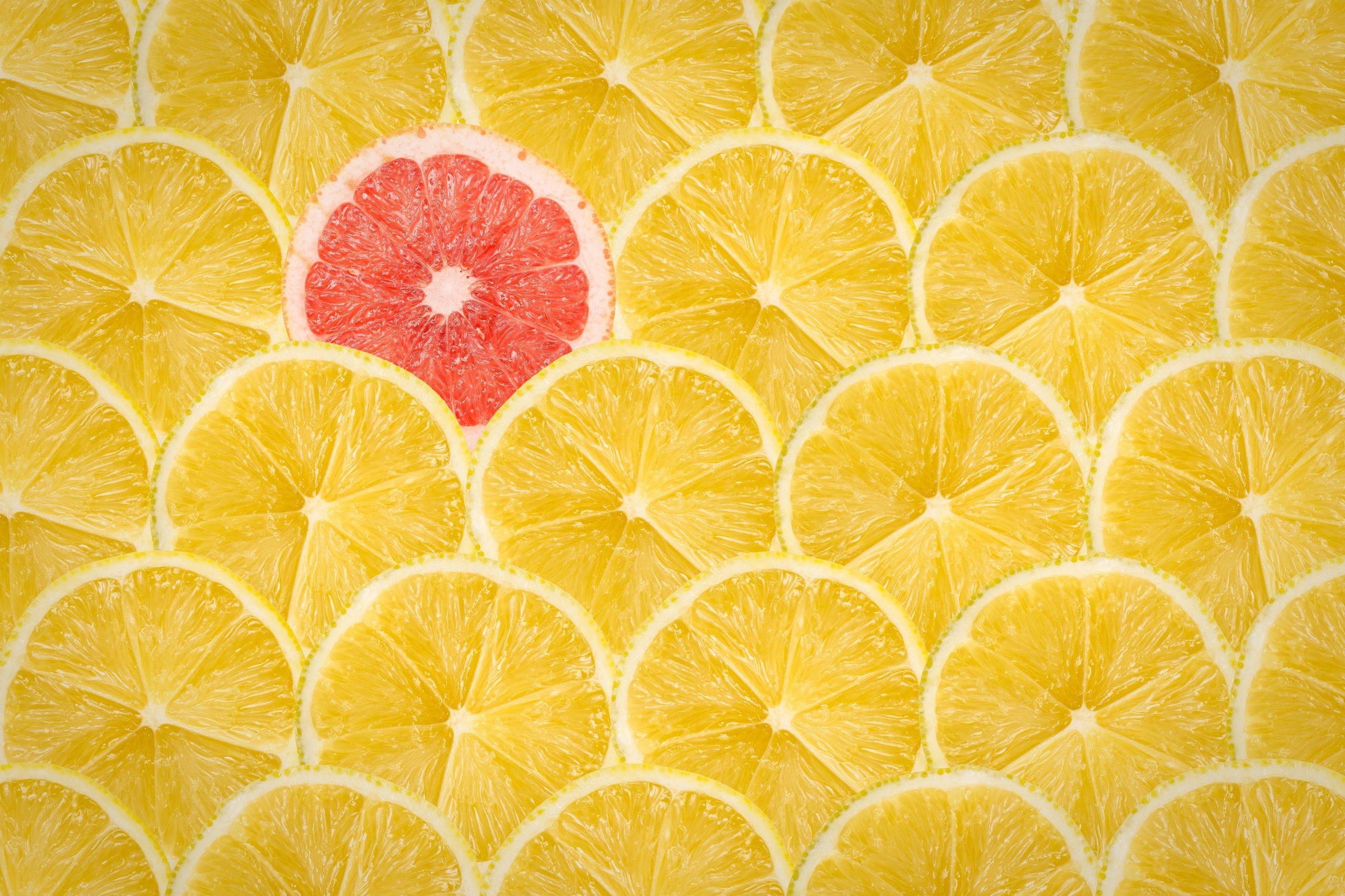 Lemon Slices, Unique | Jack R. Hayes
